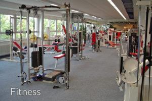 Unternehmensberatung Fitness-und Wellnessbranche, Fitnessanbieter, Sportvereine, Physiotherapeuten, u.v.m.